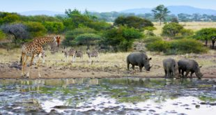 Mapungubwe-Nationalpark