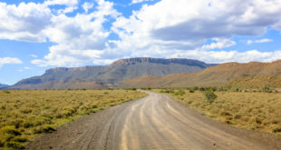 Karoo National Park ©bennymarty - Fotolia